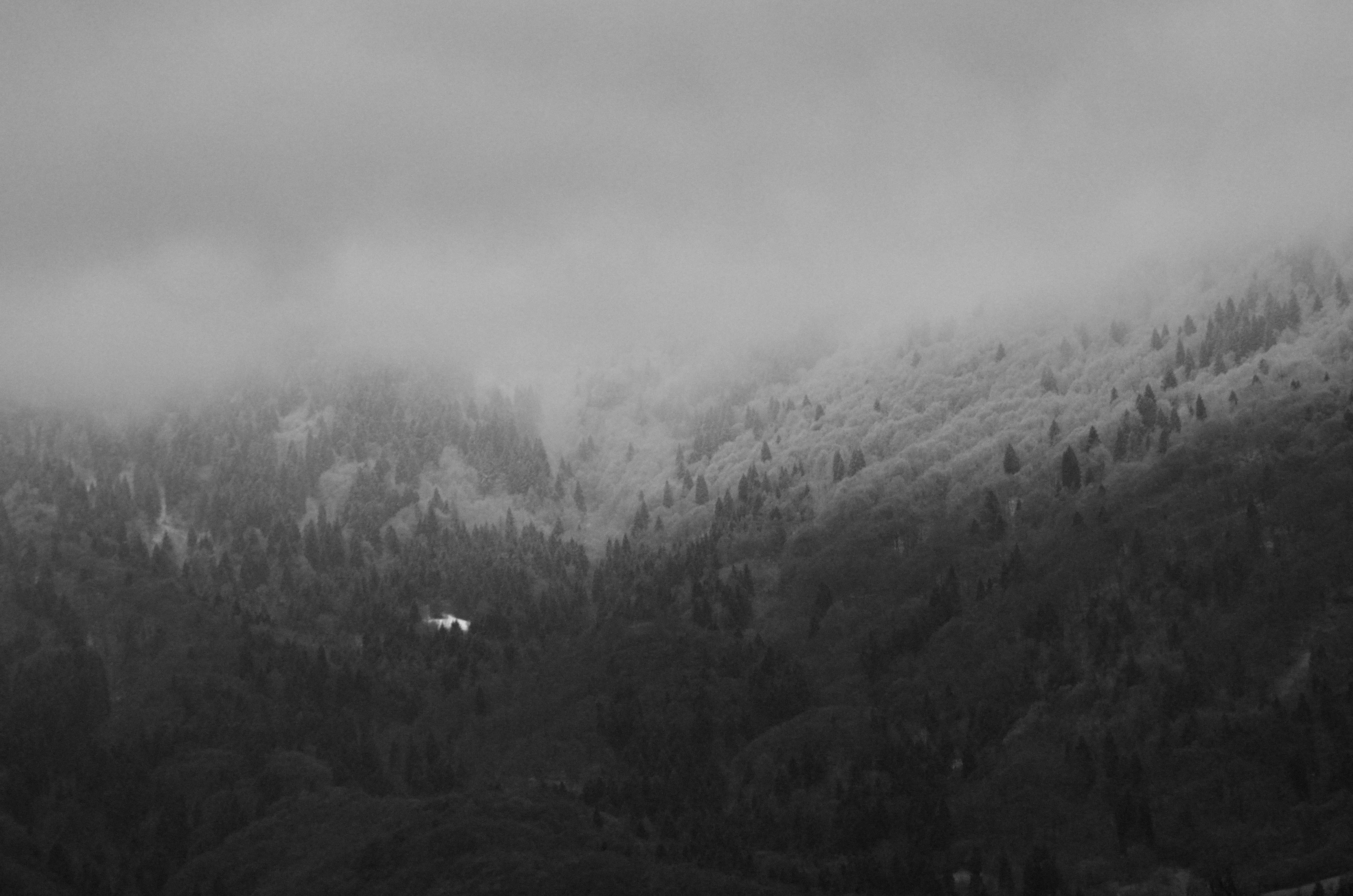Meteotrentino l'aveva annunciato: neve a 750-800 m s.l.m! Sarà la prima e ultima volta della nuova stagione pri maverile?