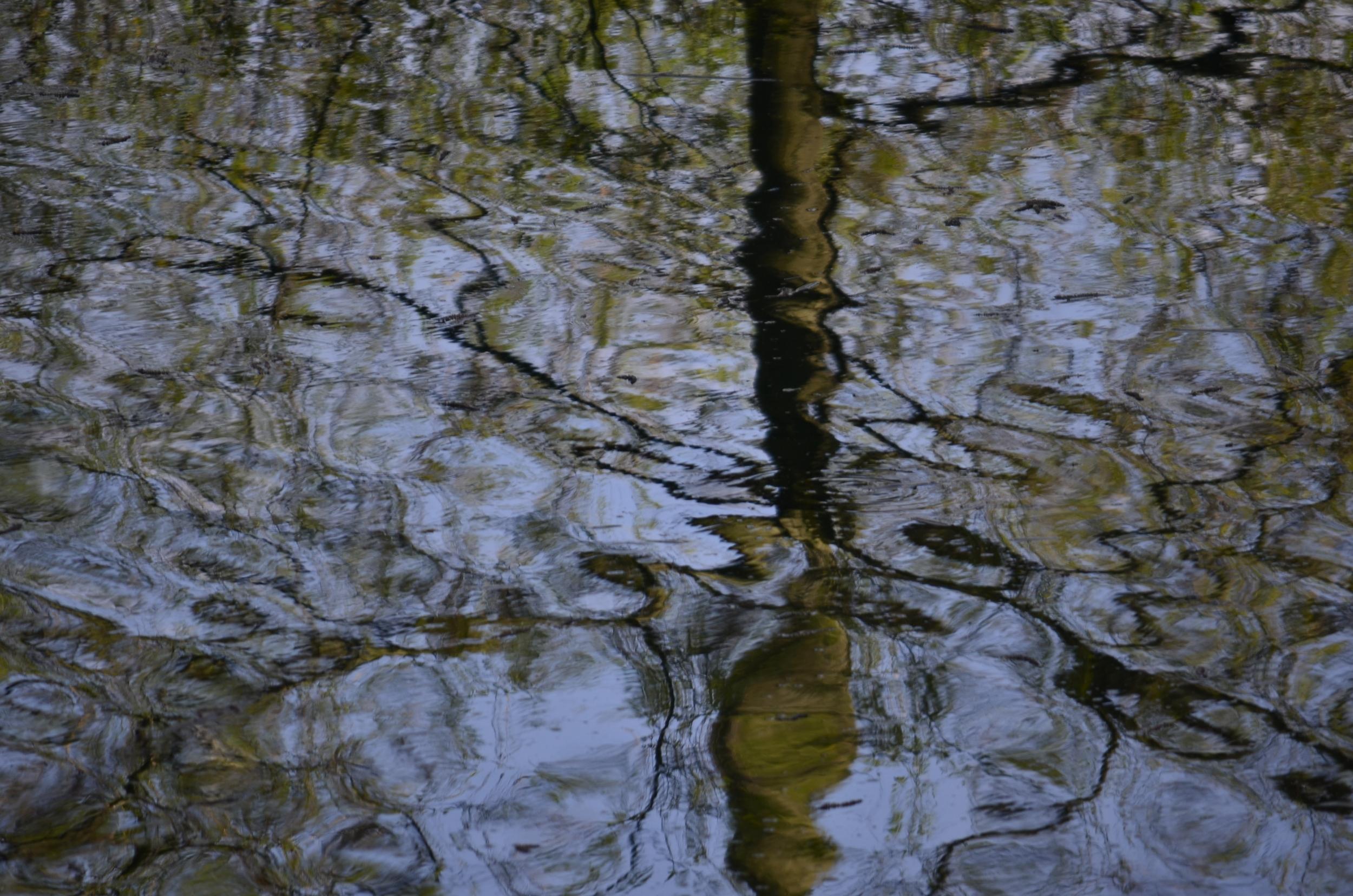 Riflessi pittorici nel lago di Loppio.