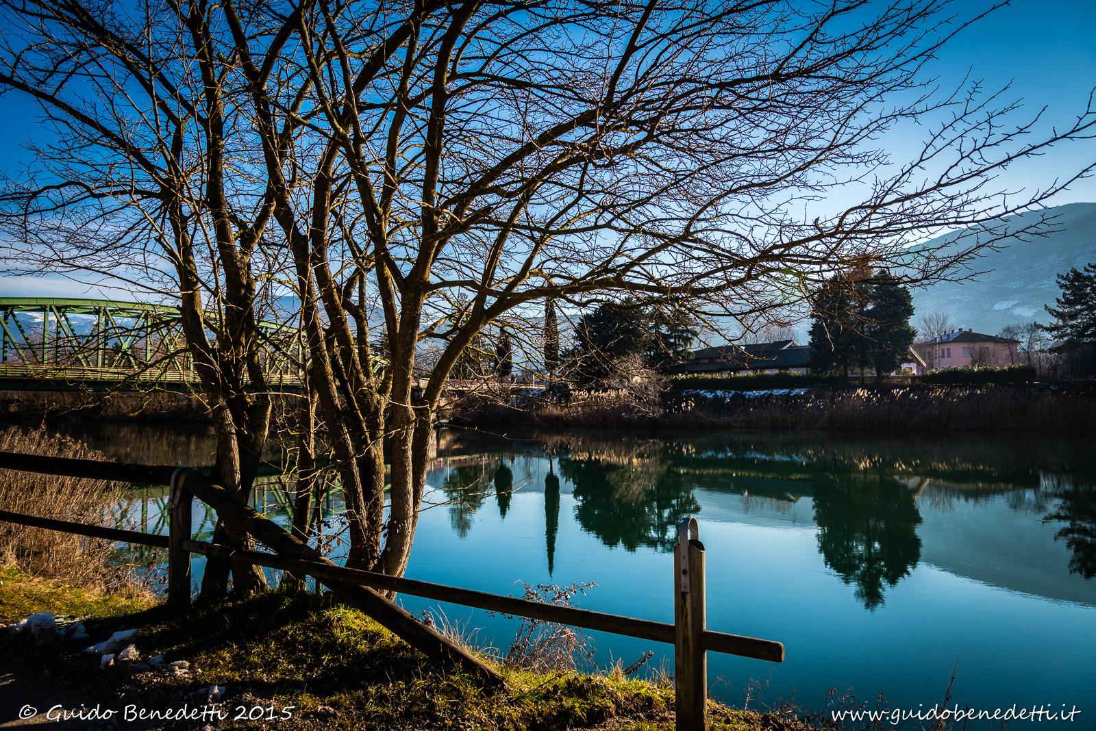 Adige lento e alberi narcisisti