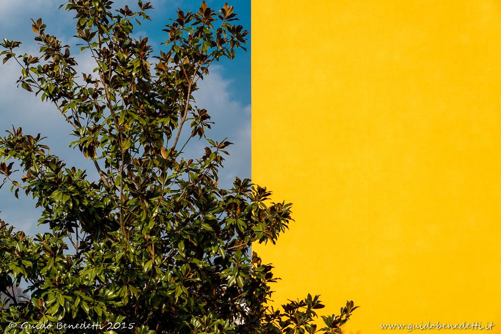 Bandiera tricolore?